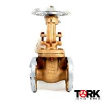 Pima Valve Bronze Flanged gate valve OS&Y bronze trim B102E copy