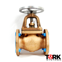 Pima Valve Bronze flanged globe valve monel trim B122E copy